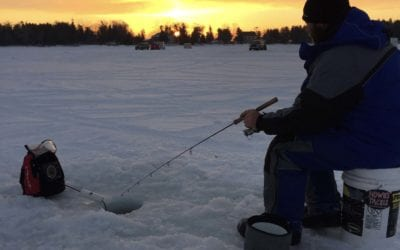 Top Ice Fishing Lures